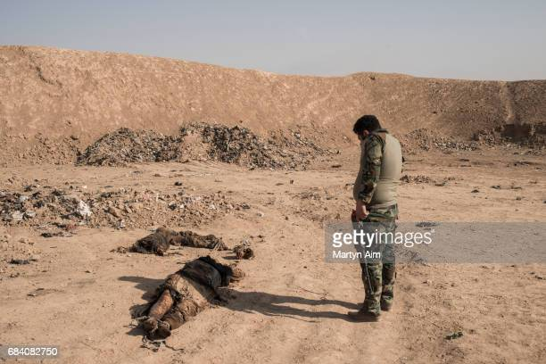 Shia fighter stands looking at dead bodies at the site of a mass grave in Hammam alAli northern Iraq Over a hundred bodies were found decapitated by...