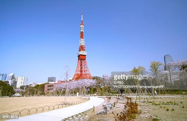 Shiba Park and Tokyo Tower, Minato Ward, Tokyo, Japan