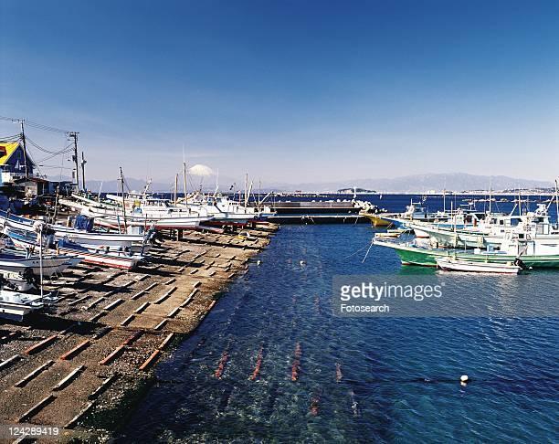 shibazaki fishing port, hayama, shonan, kanagawa prefecture, japan, high angle view, pan focus - kanto region - fotografias e filmes do acervo