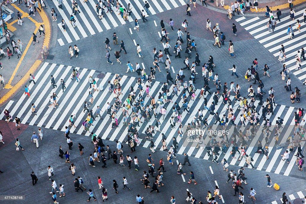Shibuya Crossing Aerial : Stock Photo