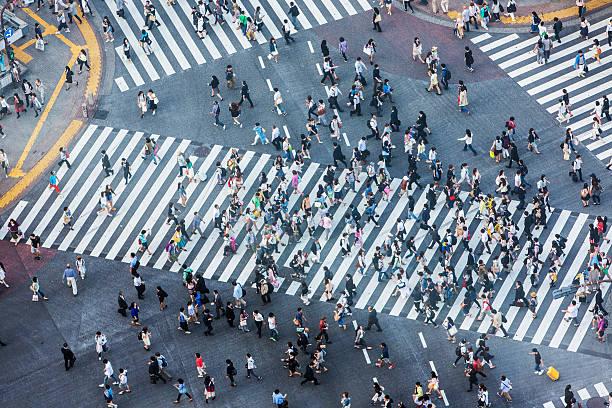 Shibuya Crossing Aerial Wall Art