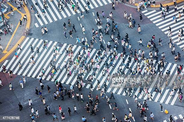 shibuya crossing aerial - overhead view of traffic on city street tokyo japan stock photos and pictures