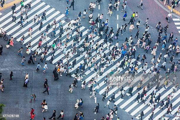 Shibuya Crossing Aerial