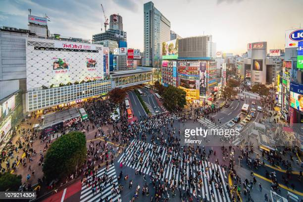 shibuya crossing aerial view tokyo japan - overhead view of traffic on city street tokyo japan stock photos and pictures