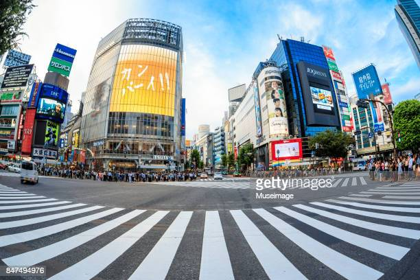 shibuya crossing and surrounding commercial buildings - 魚眼撮影 ストックフォトと画像