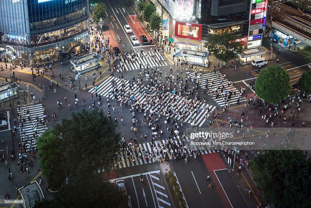 Shibuya Crossing at night : Stock Photo