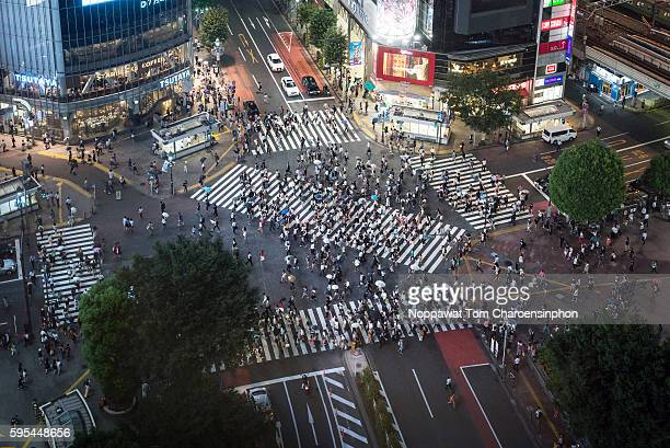 shibuya crossing at night - overhead view of traffic on city street tokyo japan stock photos and pictures