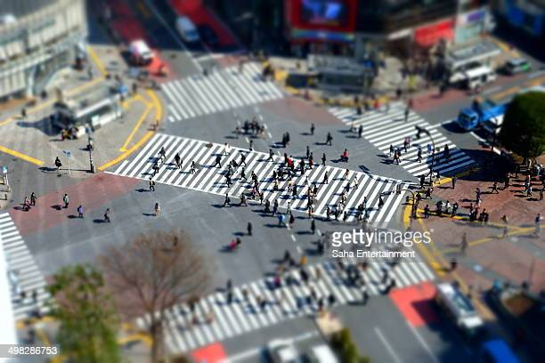 Shibuya crossing close up in the morning