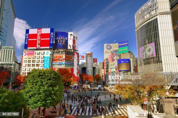 Shibuya Crossing  elevated view