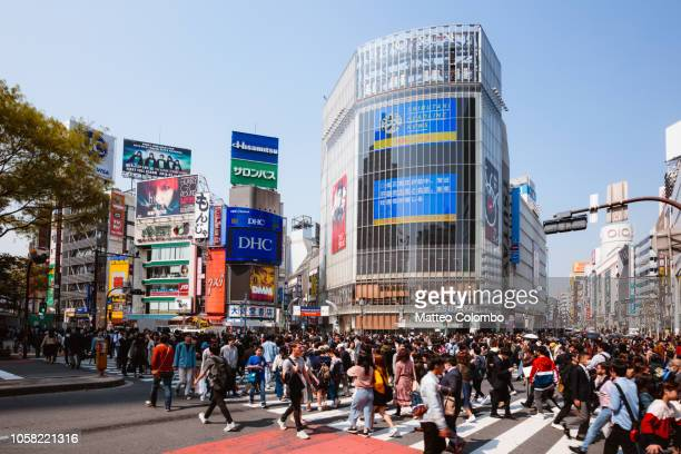 shibuya crossing full of people. tokyo, japan - international landmark stock pictures, royalty-free photos & images