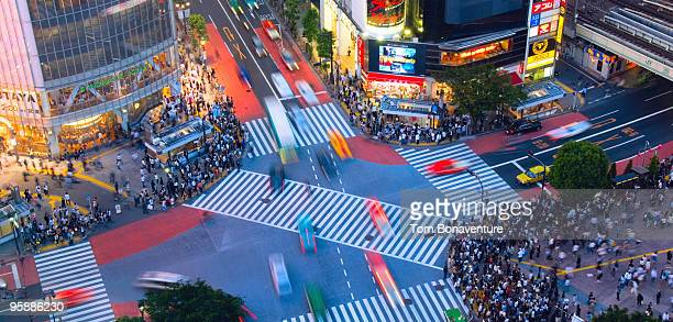 Shibuya crossing in the evening