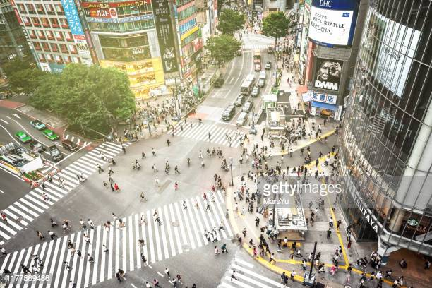 shibuya crossing in tokyo - この撮影のクリップをもっと見る 2025 stock pictures, royalty-free photos & images