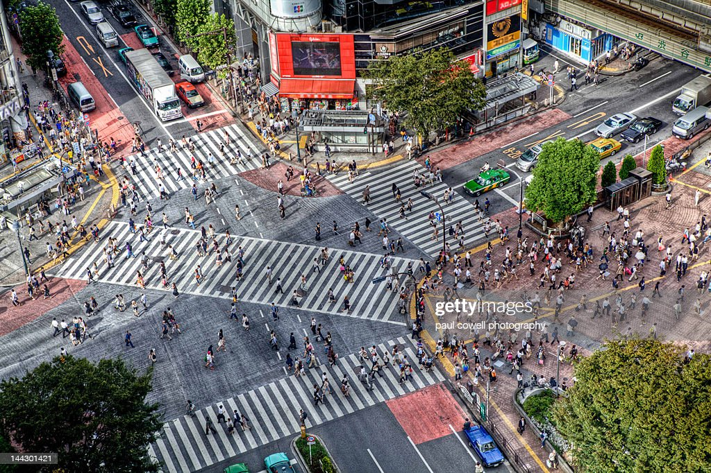 Shibuya crossing : Stock Photo
