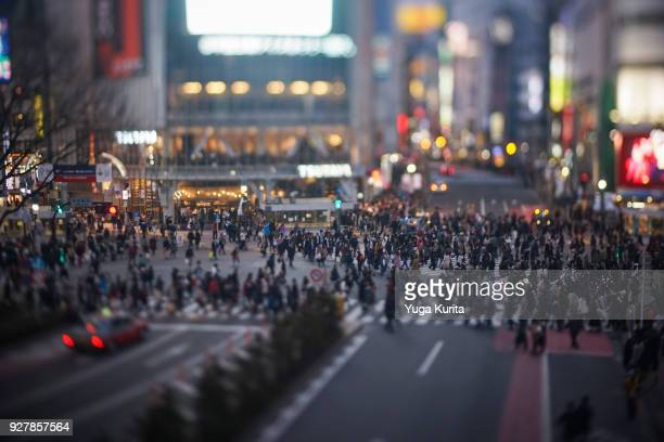 shibuya crossing (tilt-shift) - affollato foto e immagini stock