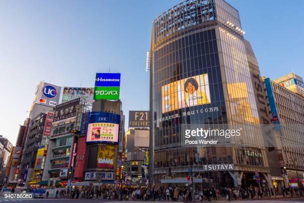 shibuya crossing - shibuya ward stock pictures, royalty-free photos & images