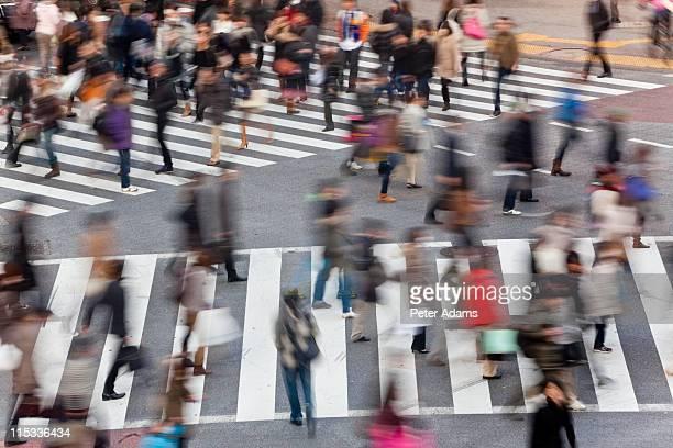 shibuya crossing, shibuya,tokyo, japan - 交差点 ストックフォトと画像