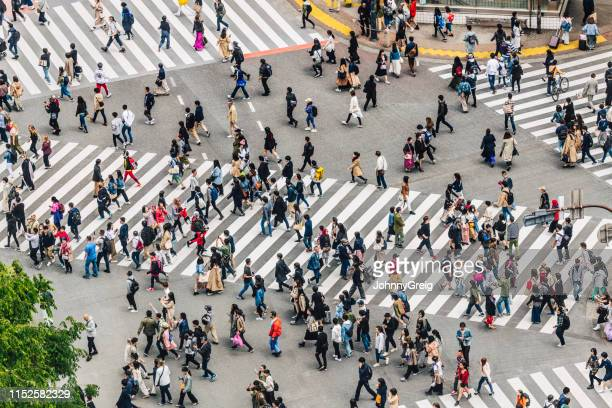 shibuya crossing, tokyo, japan - crossing stock pictures, royalty-free photos & images