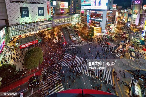 shibuya crossing, tokyo, japan - mauro tandoi stock photos and pictures
