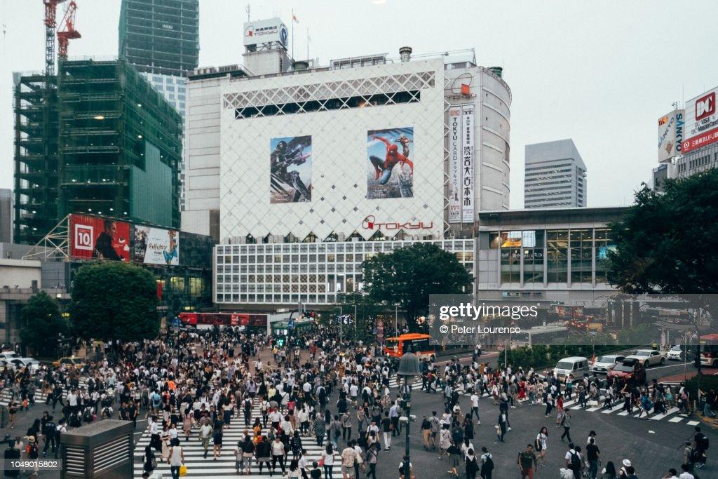 Shibuya scramble crossing : Stock-Foto