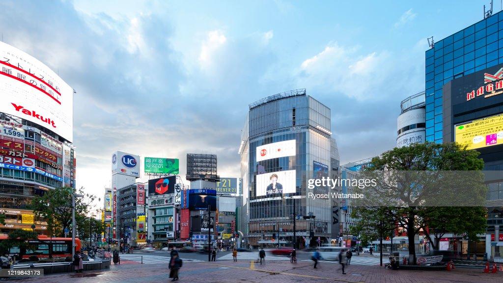 渋谷スクランブル交差点 : ストックフォト