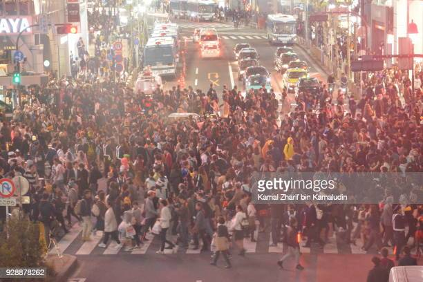 shibuya scramble crossing - overhead view of traffic on city street tokyo japan stock photos and pictures
