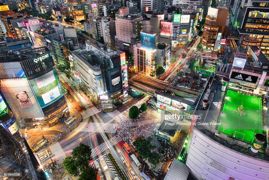 Shibuya Scramble Crossing, Tokyo : Stock Photo