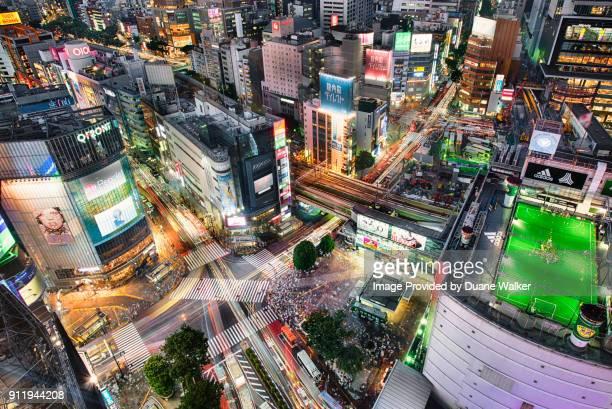 shibuya scramble crossing, tokyo - tóquio - fotografias e filmes do acervo