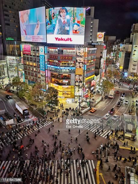 shibuya, tokyo, japan - prefeitura de tóquio imagens e fotografias de stock