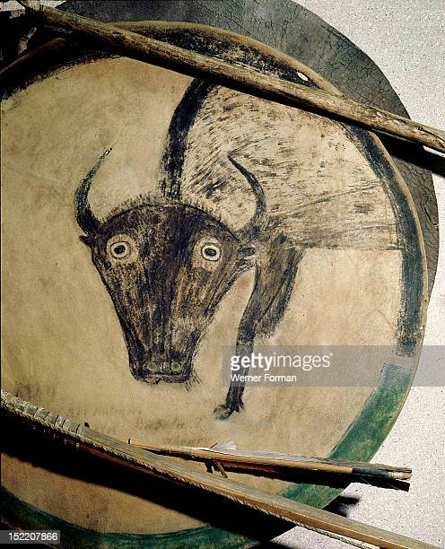 Shield cover painted with an image of a bison Arrows also shown USA Plains Indian