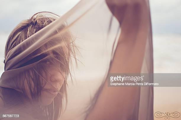 shield - doorzichtige stof stockfoto's en -beelden