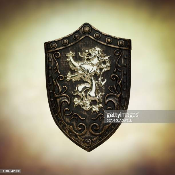 shield with lion insignia - weaponry stock pictures, royalty-free photos & images