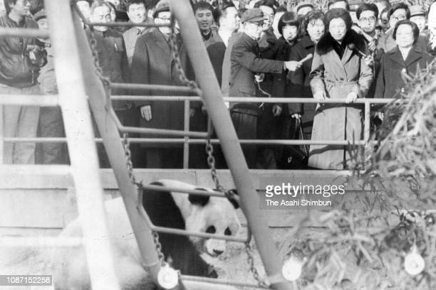 Shigeko Ohira, wife of Prime Minister Masayoshi Ohira watches giant panda Huan Huan at Beijing Zoo on December 7, 1979 in Beijing, China.