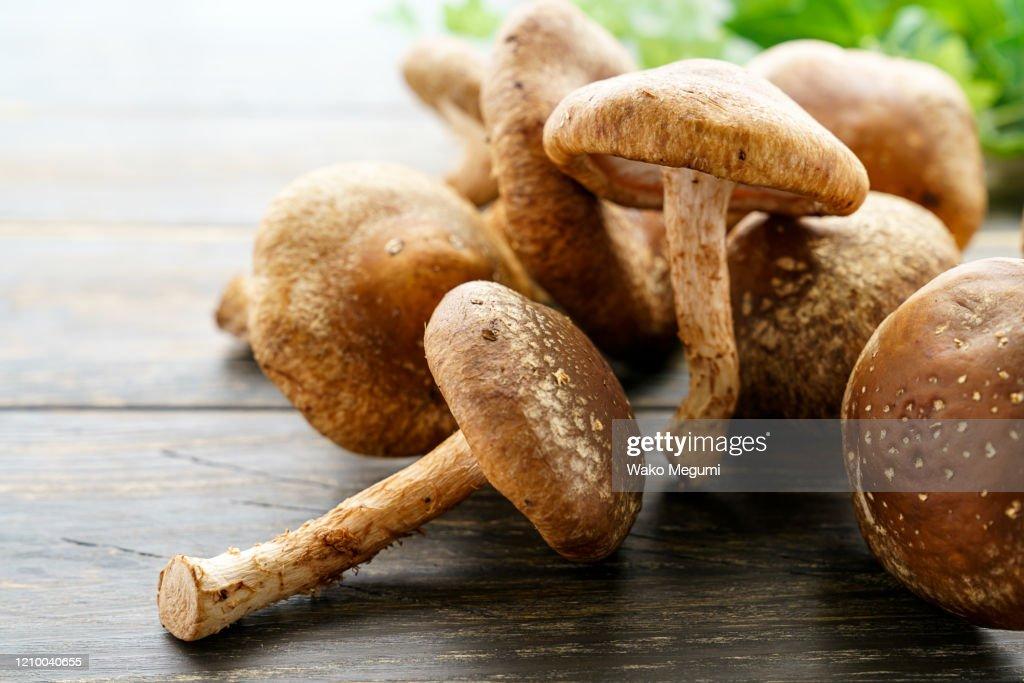 Shiitake mushroom on wooden table : Stock Photo