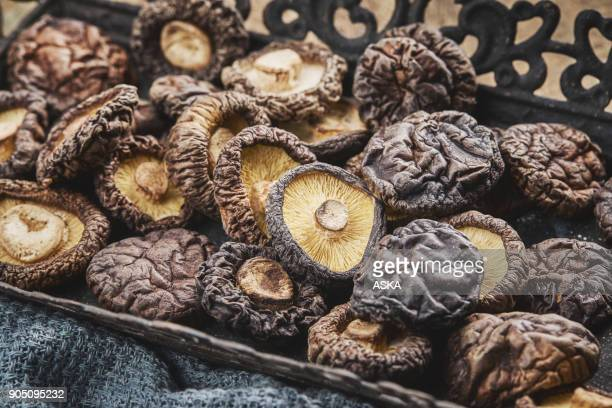 shiitake mushroom on wooden table - shiitake mushroom stock pictures, royalty-free photos & images