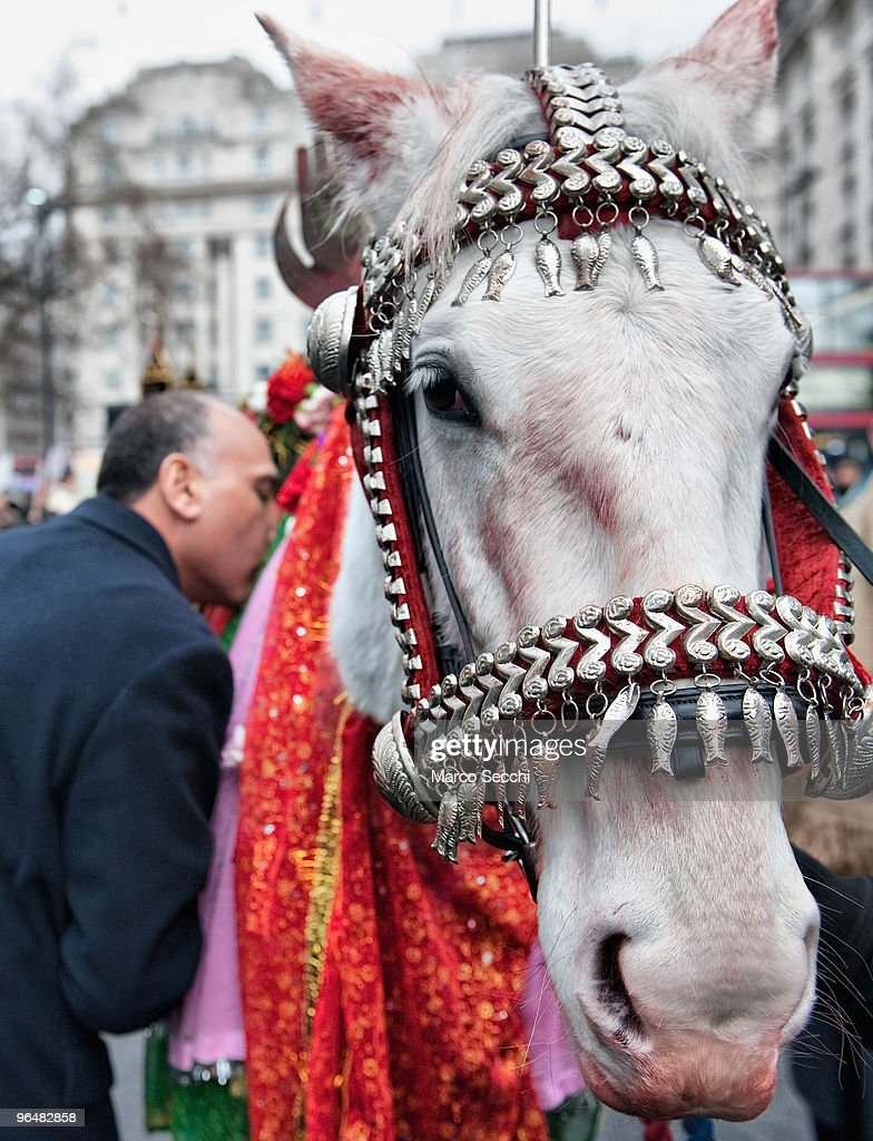 Shiite Muslim Devotees Mark Arbaeen (40th Day) Celebration in London : Foto jornalística