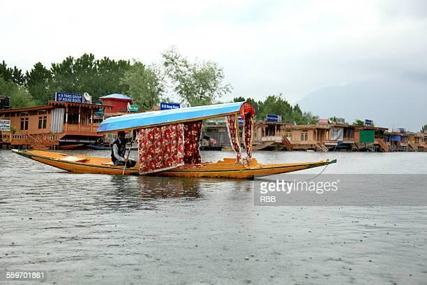 shikara boat in dal lake srinagar - kashmir valley stock photos and pictures