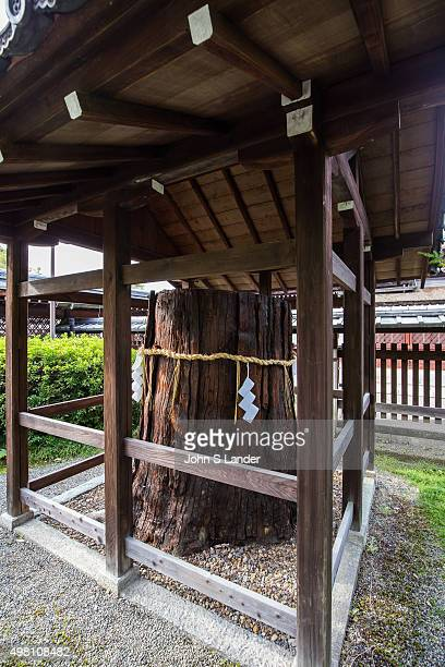 Shimenawa Shinto sacred places are typically marked with a shimenawa which is a plaited rope and shime strips of pure white paper These are placed...