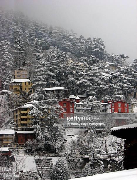 shimla, himachal pradesh - shimla stock pictures, royalty-free photos & images