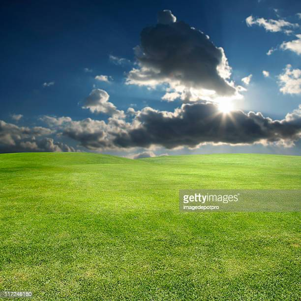 shining sun over green landscape