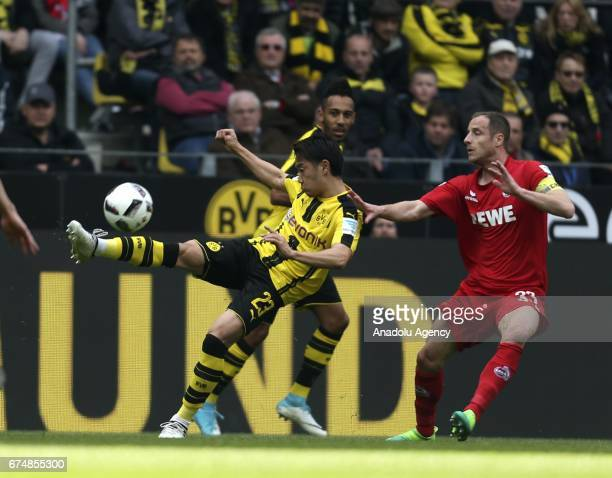 Shinji Kagawa of Borussia Dortmund in action against Matthias Lehmann of 1FC Cologne during the Bundesliga soccer match between Borussia Dortmund and...