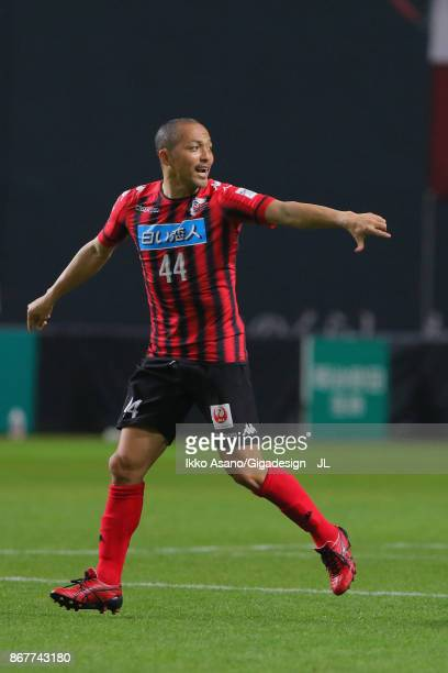 Shinji Ono of Consadole Sapporo runs into the pitch during the JLeague J1 match between Consadole Sapporo and Kashima Antlers at Sapporo Dome on...