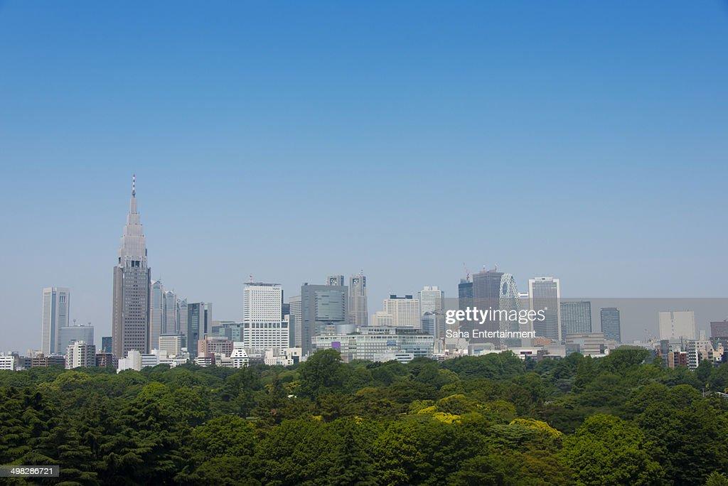 Shinjuku Buildings and Green Trees : ストックフォト