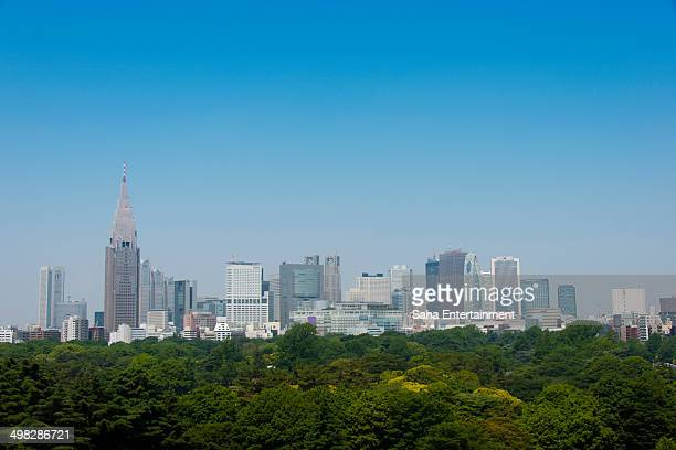Shinjuku Buildings and Green Trees