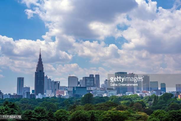 shinjuku buildings,tokyo,japan - 東京都庁舎 ストックフォトと画像