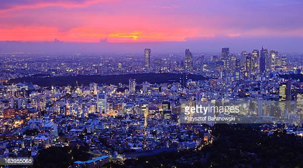 Shinjuku Dramatic