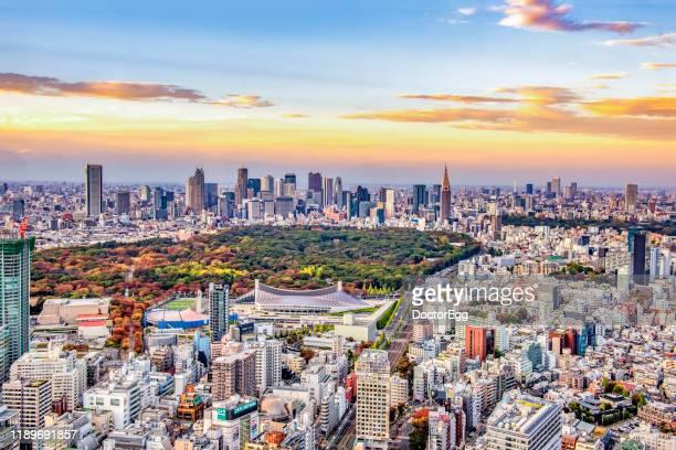 shinjuku gyoen park with shinjuku skyscraper buildings background at sunset autumn, tokyo, japan - olympic stadium stock pictures, royalty-free photos & images
