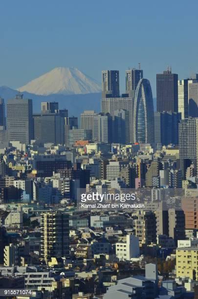 Shinjuku skyscrapers and Mount Fuji