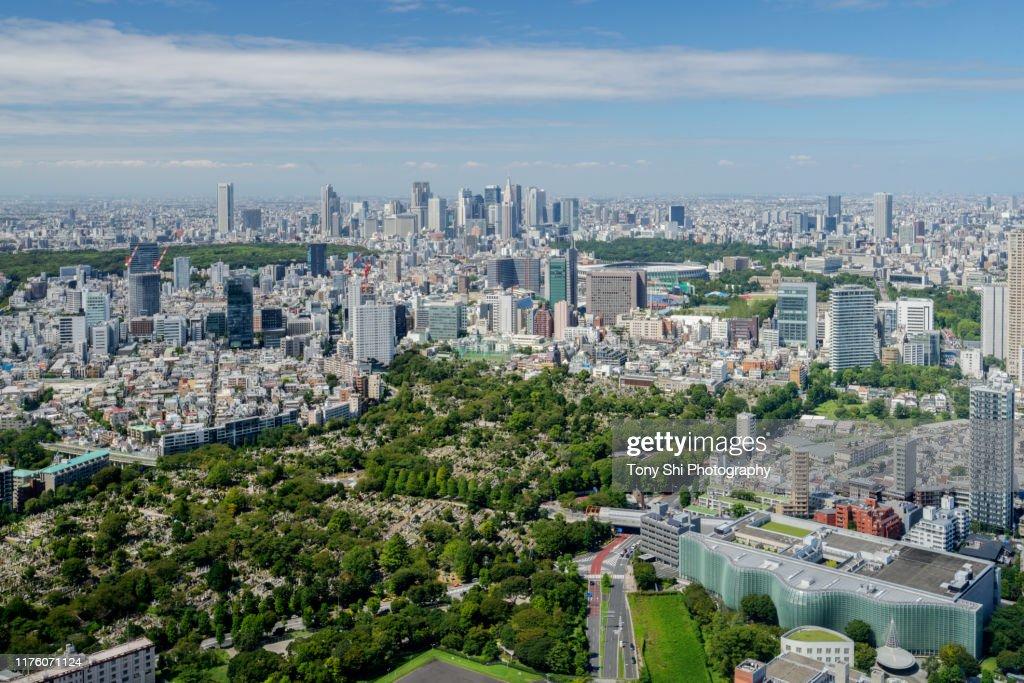 Shinjuku Tokyo skyline - Tokyo Japan : ストックフォト