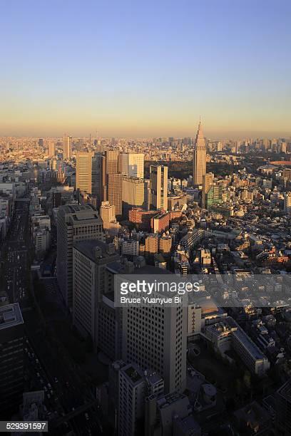 Shinjuku under late afternoon sun