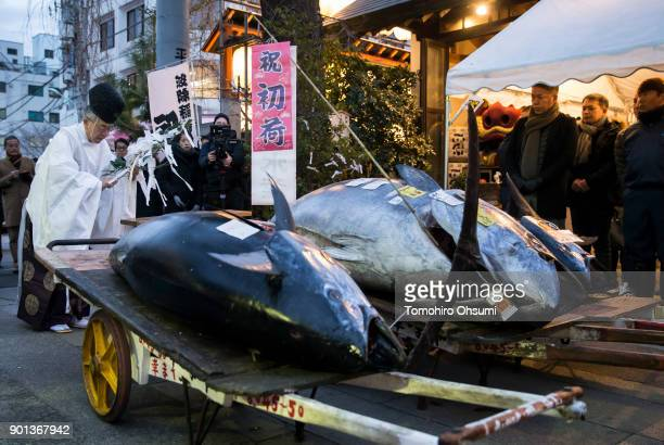 Shinto priest holds a traditional ceremony for the highest priced fresh bluefin tuna auctioned from the year's first auction at Tsukiji Market on...